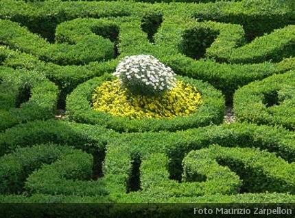 Giardino labirinto la progettazione le piante adatte e for Giardino labirinto